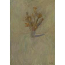 cuadrado, flores