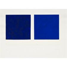 teixidor-dos azules